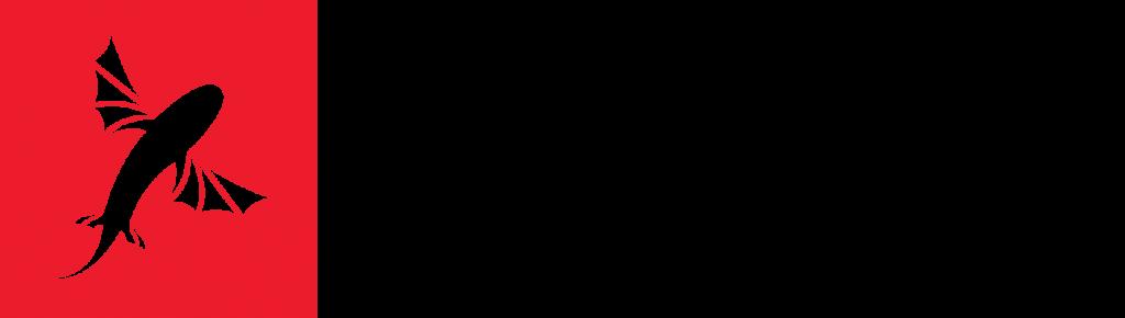 logo bestkiteboarding